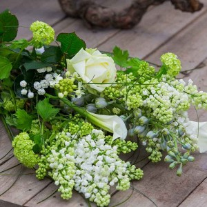 Schnittblumen & Vasen